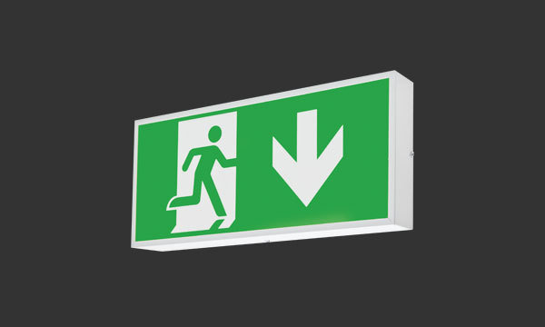 Exit Sign product photograph